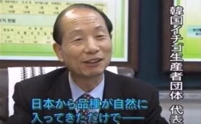 【韓国パクリ疑惑】東南アジアで大人気の韓国産イチゴ、元々は日本からパクったものだった!?