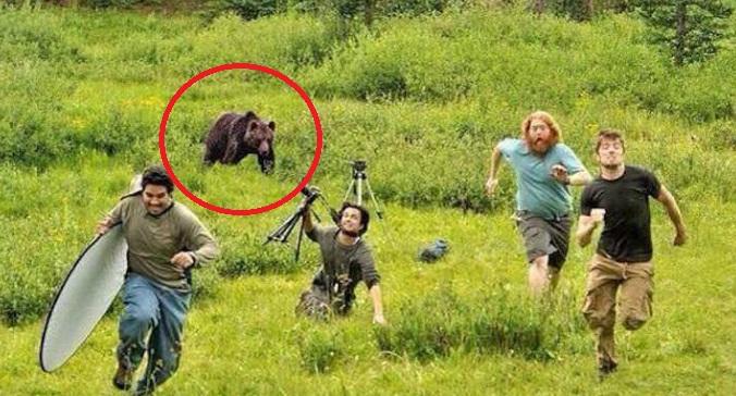 【衝撃動画】クマと遭遇したときに絶対やってはいけないこととは・・・それを熟知していた男が九死に一生を得た衝撃の動画