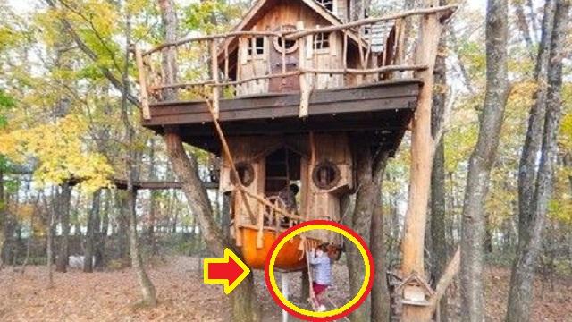 旦那が私有地に作ったツリーハウスに、見知らぬ奥が「あの遊具の階段は手すりが無くて危ない!うちの子を遊ばせられない!」と文句を言い出した