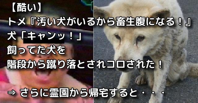 【酷い】トメ『汚い犬がいるから畜生腹になる!』犬「キャンッ!」飼ってた犬を階段から蹴り落とされコロされた!⇒ さらに霊園から帰宅すると・・・