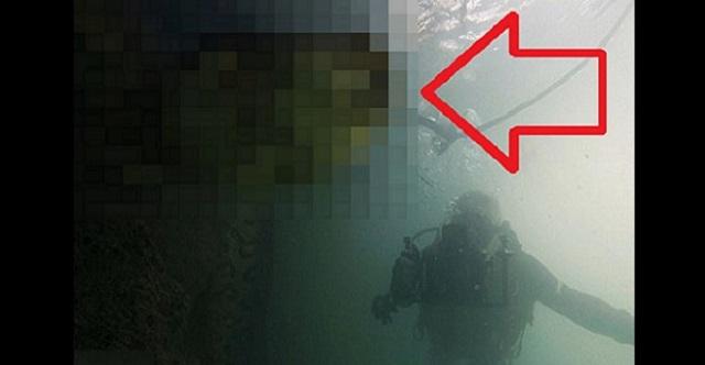 【驚愕】アマゾン川に潜ったダイバーが遭遇したのは…バケモノ級のアレだった!!これ、襲われたらひとたまりもないな・・・