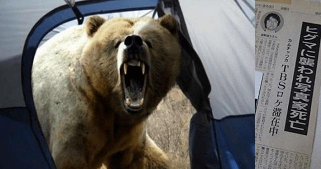 【悲劇】取材スタッフが凶悪なヒグマに食い殺された・・・『どうぶつ奇想天外』で起きた史上最悪の死亡事故がこちら!