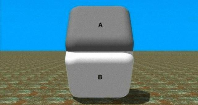 【驚愕画像】AとBの間を指で隠すと・・・あら不思議!!目の錯覚が引き起こす不思議画像7選!