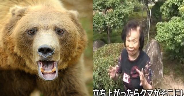 【驚愕】野生の熊と「素手」で戦った82歳のおばあさんがヤバ過ぎる・・・