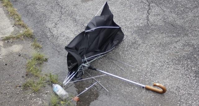 【再利用】壊れた傘のオシャレで便利な使い道10選