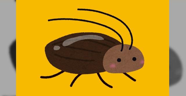 【朗報】ゴキブリ対策として『あるもの』をお茶パックに入れて部屋に置いた結果 →「4年近く家でGを見てない。」