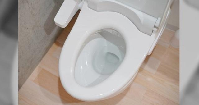 【驚愕】「え、トイレのココって折れるんだ…」→ 目を疑うまさかの写真に愕然とした・・・