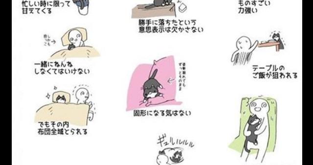 「猫を飼うのは大変!」Twitterに投稿されたイラストが話題に!→ それでも飼いたくなっちゃうのは何故!?